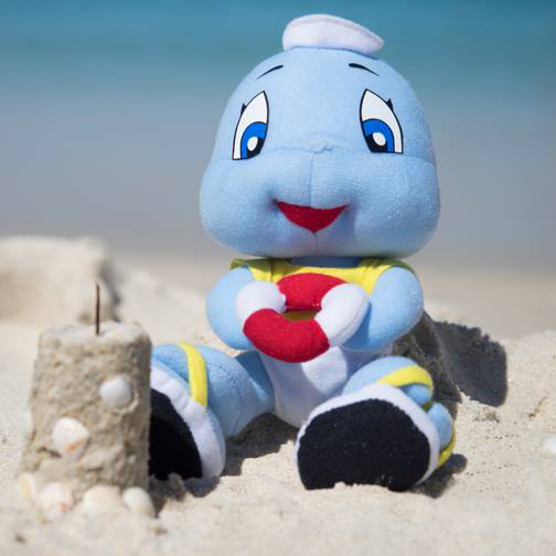 Fin the Baby Shark Soft Toy at Cottesloe Beach